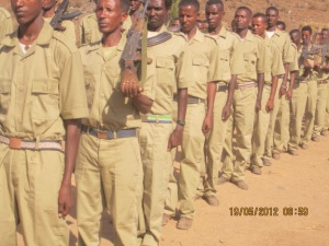 d2256-amharademocraticmovementforce-ethiopia2